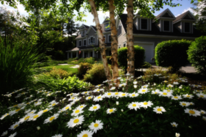 tips for preventing weeds in your landscape